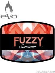 Fuzzy Summer 10ml / 6mg - никотинова течност Evo