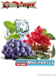 Red Fruits 10ml - Concentrated flavor for e-liquids by G-Vape