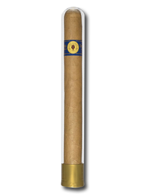 Santa Damiana Churchill Glass Tube