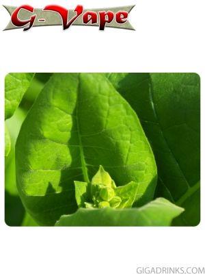 Virginia Tobacco Absolute 10% PG 10ml - концентриран аромат за овкусяване от G-Vape