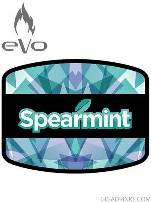 Spearmint 10ml / 6mg - никотинова течност Evo