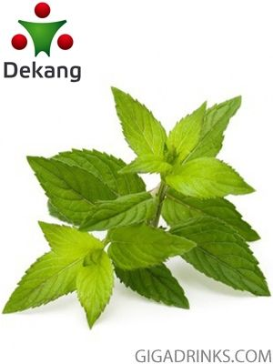 Menthol - никотинова течност за ел.цигари Dekang