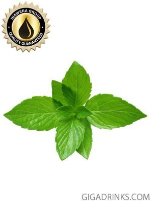 Mint - aромат за никотинова течност Inawera 10мл.