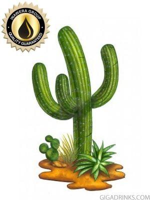 Cactus Concentrate - aромат за никотинова течност Inawera 10мл.